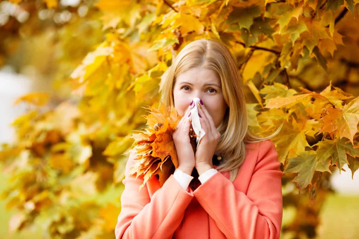 Dealing With Fall Allergies
