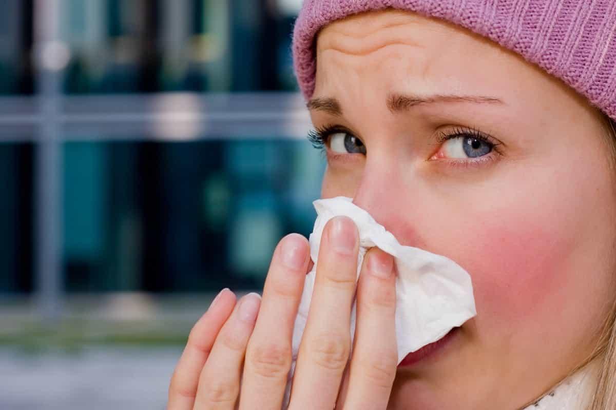 Understanding the Basics about Seasonal Influenza