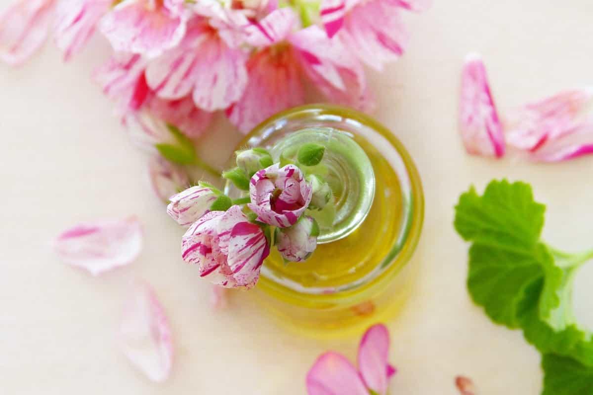 best oil for skin
